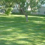 yard service camrose