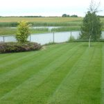 lawn care camrose
