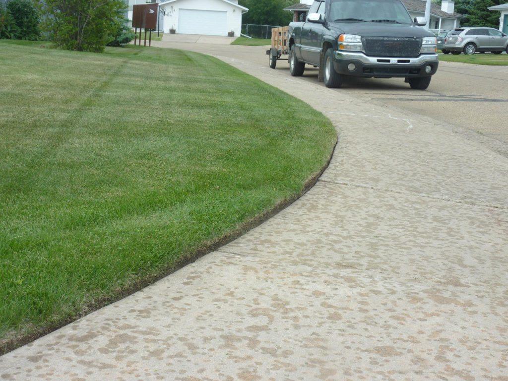 professional lawn service